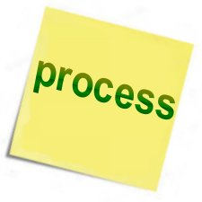 In what processes do we excel to succeed?